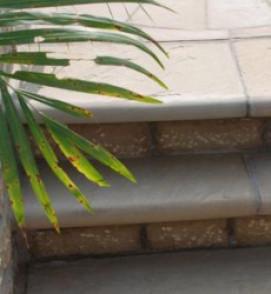 RAJ BULLNOSED STEPS